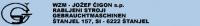 Логотип WZM J. CIGON S.P.
