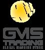 Логотип GMS TRADING