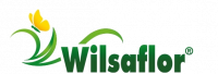 Logotips Wilsaflor GmbH & Co. KG