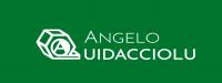 Logotipo Angelo Quidacciolu Costruzioni Meccaniche