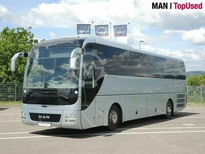 MAN LION`S COACH / R07