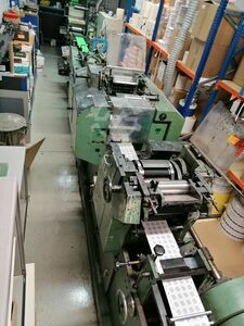 FLEXO gallus Q 33