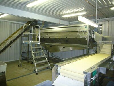 Used Dornow potato peeling line